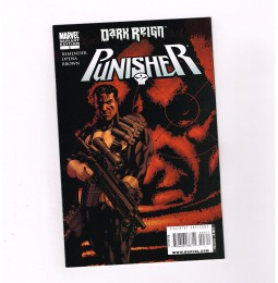 THE-PUNISHER-v8-3-Beautiful-limited-edition-variant-by-Mike-McKone-NM-301796331658
